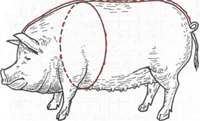 , Таблица соответствие веса. Обмер свиньи