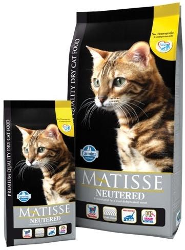 , Выбираем качественный корм для любимой кошки