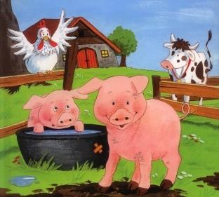 3-svinovodstvo