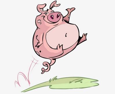 Правильный забой свиньи или как получить качественное мясо