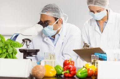 Экспертиза продуктов питания